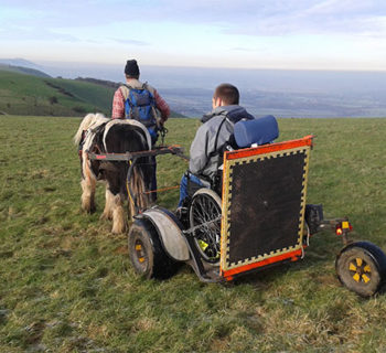 Pony And Wheelchair Carriage Crossing A Meadow In South Downs Way National Park