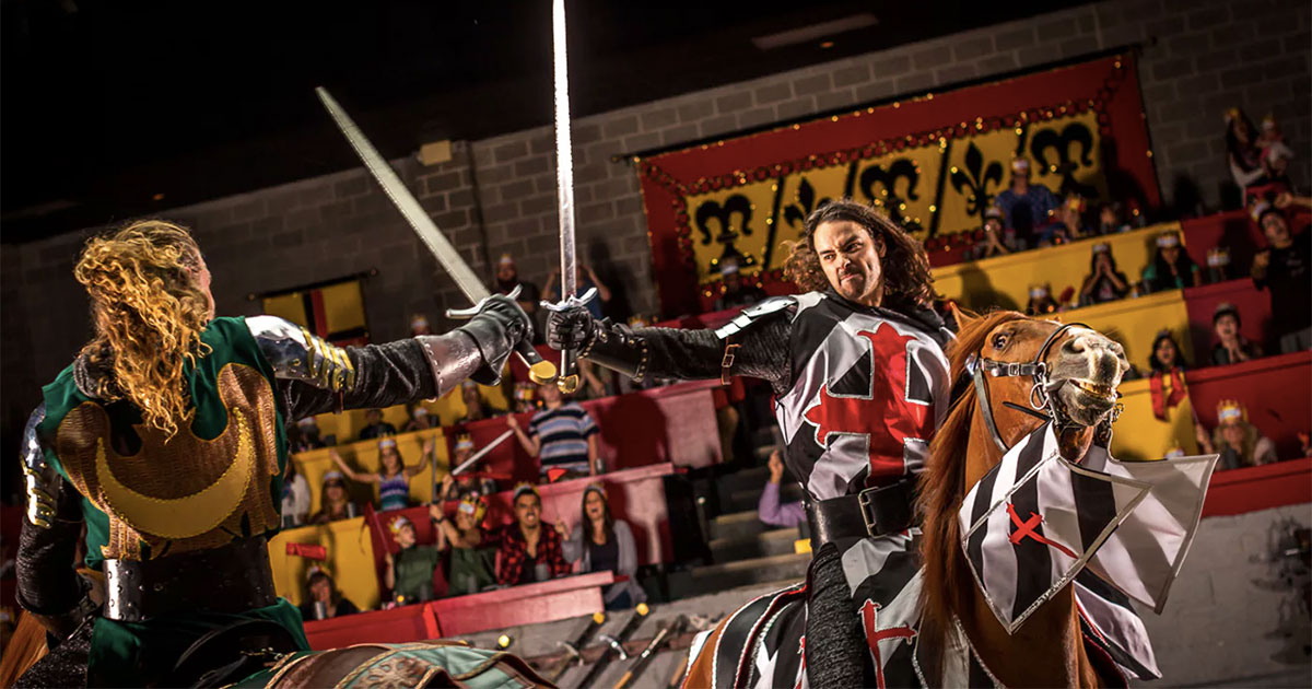 A Wheelchair Accessible 'Knight' At The Medieval Times Castle